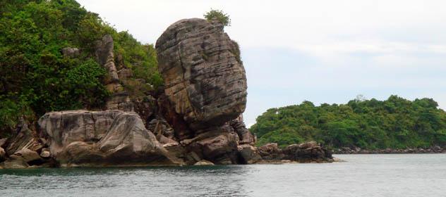 Thiên nhiên hoang sơ của biển và rừng xanh