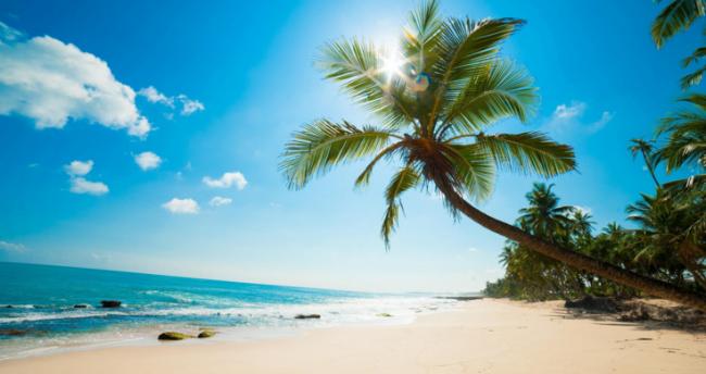 Bãi biển Cây Dừa như bức tranh sơn thủy đẹp trữ tình