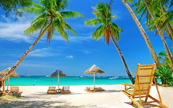 Bãi Biển Cây Dừa Phú Quốc