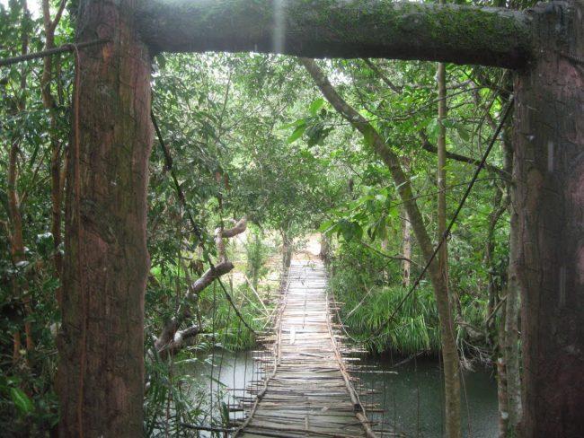 Cầu treo ở thác suối Đá Bàn