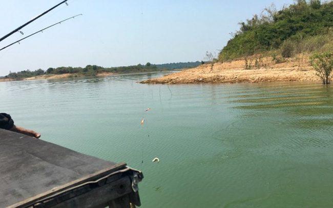 Câu cá bên bờ hồ