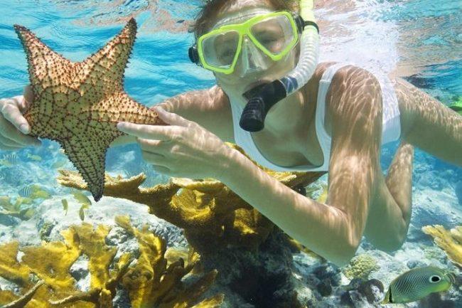 Quý khách có thể nhìn thấy san hô khi lặn biển tại đây